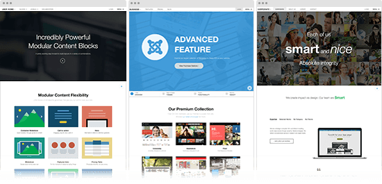 bundled with 17 pre built site templates